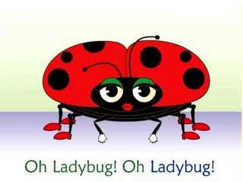 Frank Leto's Ladybug Ladybug Song