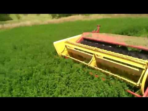 Cutting Alfalfa For Hay, Part 1 of 8
