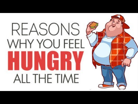 Reasons Why You Feel Hungry All the Time