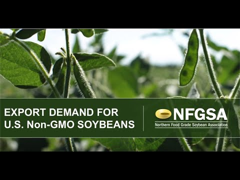 Export Demand for U.S. Non-GMO Soybeans by Mary Pat