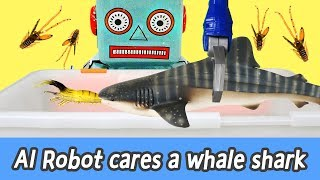 [EN] AI Robot cares a whale shark! animals names for kids, coco animal animation, collectaㅣCoCosToy