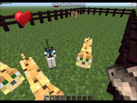 Minecraft Tutorials - Pet Cats (Tamed Ocelots!)