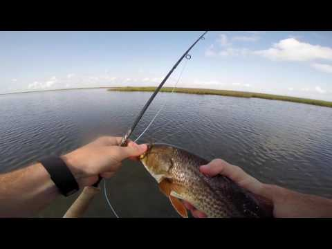 Texas Redfish on Fly (GoPro Video)