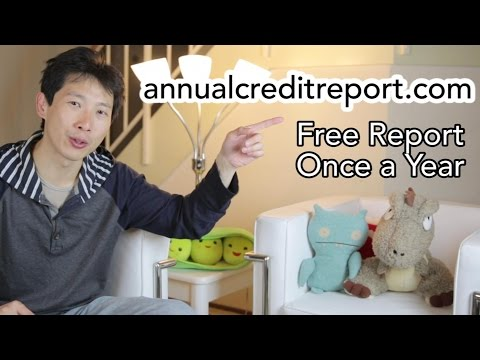 How to Repair Your Own Credit for Free | BeatTheBush