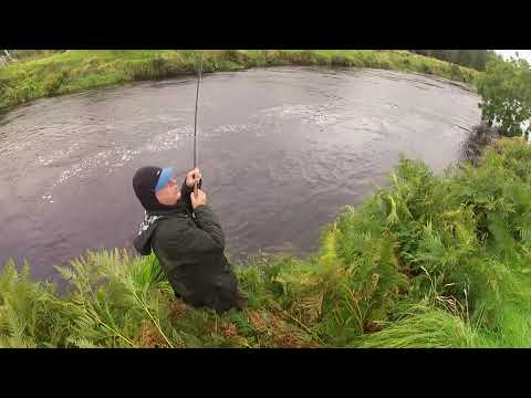 It's a Doddle, catching all these Salmon on The Soldier Palmer