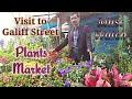 Visit to Galiff Street Plants Market, Shyambazar , Kolkata , Part - 1