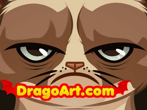 How to Draw the Grumpy Cat, Tardar the Grumpy Cat, Step by Step