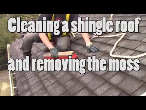 BW Powerwashing Langley - Shingle roof cleaning - Removing and killing moss and algae Abbotsford bc