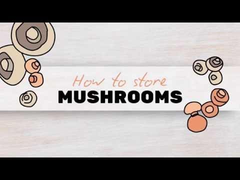 Storing Mushrooms
