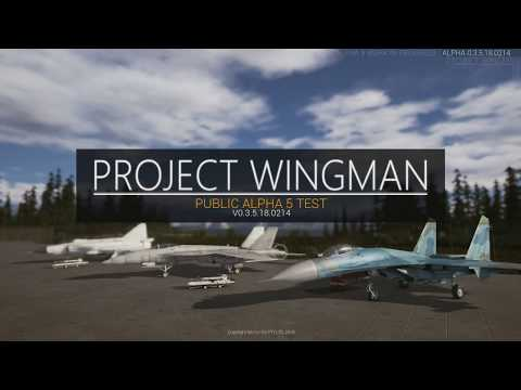 project wingman indie flight sim drunk dog fighting