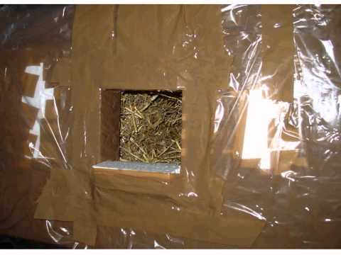 Build Cat hut or Shelter for Stray or Homeless Cats
