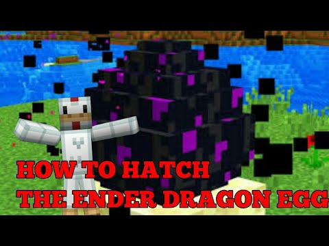 ✔ Minecraft | How to hatch the Ender Dragon egg
