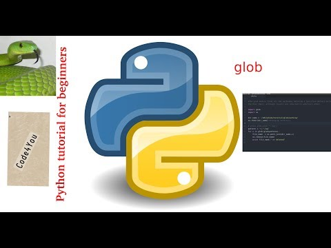 python glob module|glob.glob pattern in python|| Python Tutorial #10|| Python Tutorial for Beginners