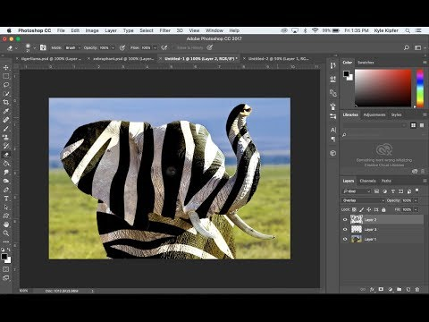 Define a Pattern and Layer Over an Animal in Photoshop CC
