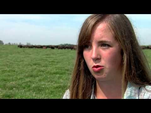 Bison Ranching : Is it for you?