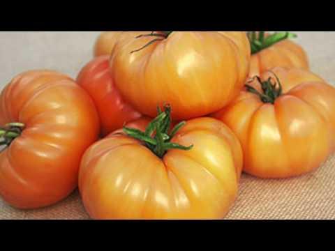 Get Free Heirloom Tomato Seeds! (Closed)