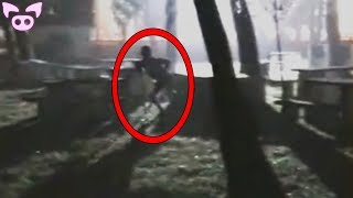 Download Scary Creatures Caught on Camera Video