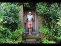 Get Gardening: North-facing Fun