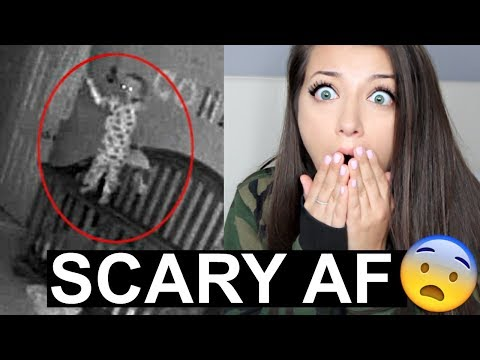 PARANORMAL BABY MONITOR ACTIVITY *VERY SCARY* REACTION*