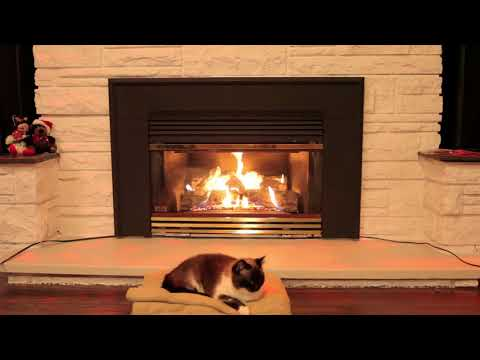 Cat Sleeping in front of a Gas Fireplace - 3 Hours - LHP