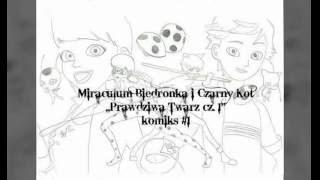 Miraculum Biedronka I Czarny Kot Komiks 68 Music Jinni