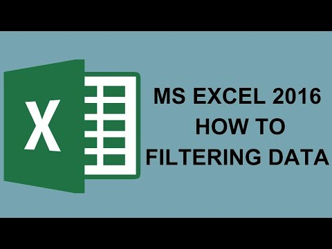 MS Excel 2016   How To Filtering Data   Easy Tutorials In Hindi