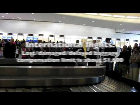 Delayed, Damaged and Lost Airline Checked Baggage