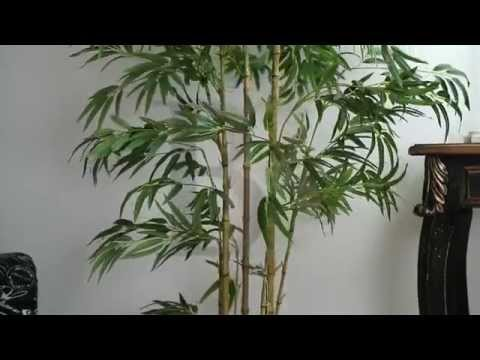 1.8m Chinese Bamboo Artificial Fake Plants - Beyond Bright