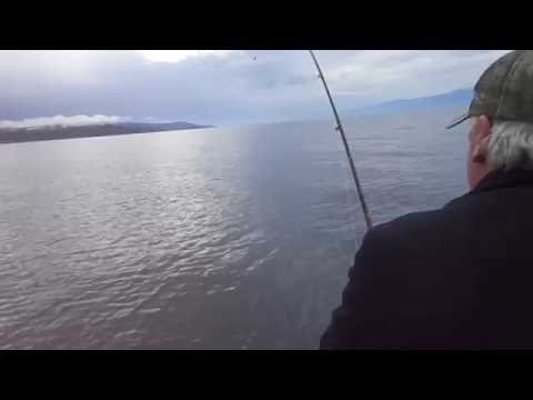 Als  Epic Battle With Spring Salmon Off Sooke BC