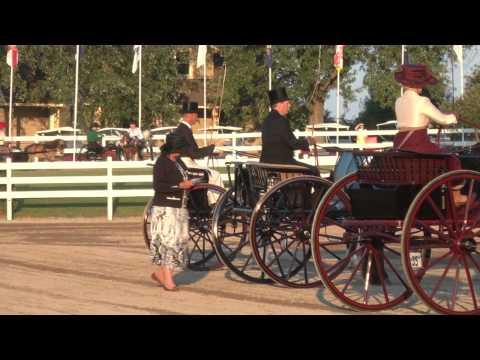 Class 16 Single Horse/Pony to Gig Friday Night Walnut Hill 2013