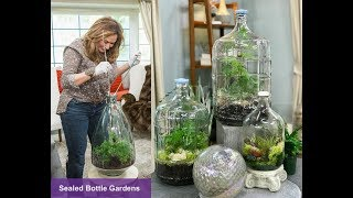 SEALED BOTTLE GARDENS: Step by Step