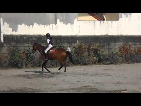 Yana- Horseback Riding - Balance and Leg Strengthening