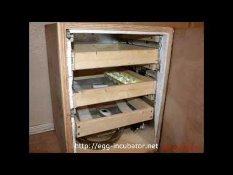 Homemade incubator for poultry - Homemade incubator for poultry with 95% incubation rate