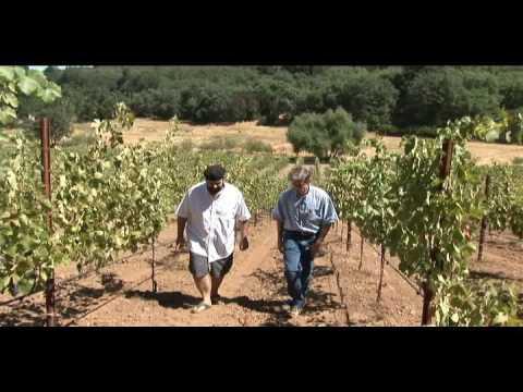 Visiting Organic Bio-Dynamic Mendocino Wine Company
