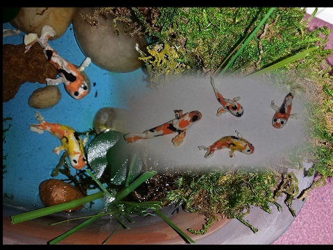 How to make Miniature Koi Fish