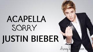 Download Justin Bieber-Sorry ACAPELLA