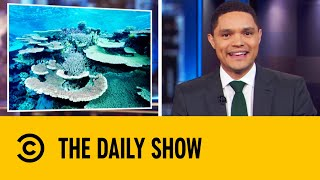 Scientists Use Speakers To Revive Dying Coral Reefs | The Daily Show With Trevor Noah
