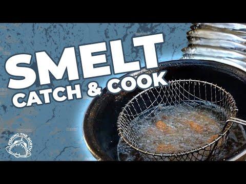 SMELT!!! Catch Clean Cook