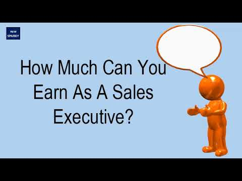 How Much Can You Earn As A Sales Executive?