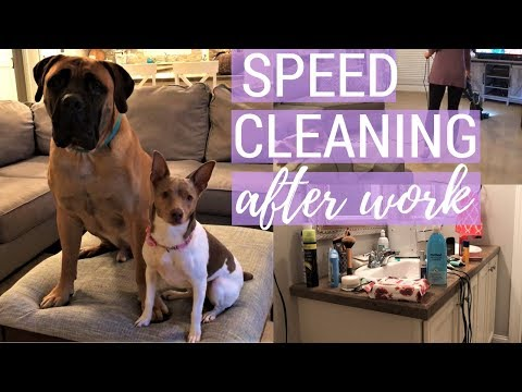 Speed Clean With Me After Work | Clean With Me | Cleaning Motivation