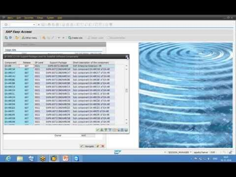 SAP ESS MSS EHP 7, Part 1 Demo, SAP ESS MSS Configuration step by step