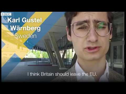 Europeans divided ahead of UK EU vote   BBC News