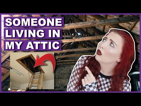 I Think There's Someone Living In My Attic (With Proof)