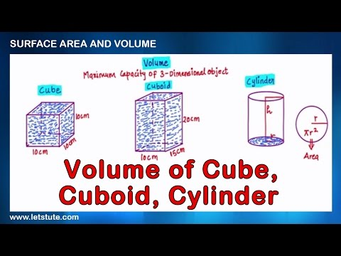 Volume of Cube Cuboid and Cylinder | Surface Area and Volume | Math | LetsTute