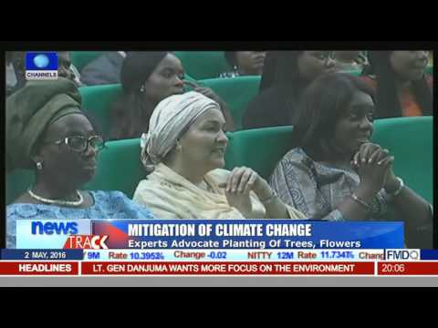 Mitigation Of Climate Change: Experts Advocate Planting Of Trees, Flowers