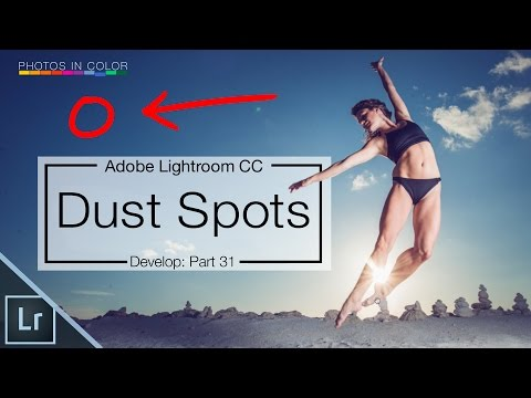 Lightroom dust removal - Visualise and remove dust spots with Lightroom spot removal tool