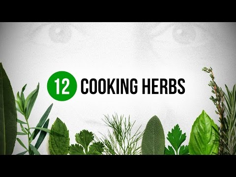 12 Cooking Herbs every Cook should know about !