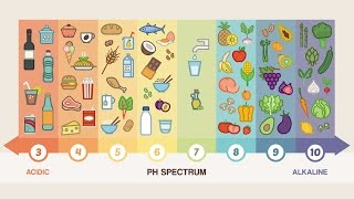 Top 10 Alkaline Foods You Should Be Eating Everyday