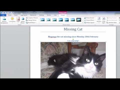 Microsoft word tutorial - Creating a simple flyer
