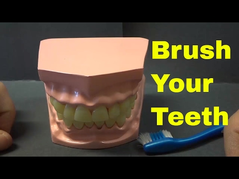 How To Brush Your Teeth Properly-FULL Tutorial